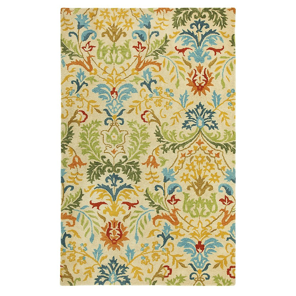 Hayden 5 x 9 Decorative Design company c rugs with harmony colors for indoor or outdoor ideas