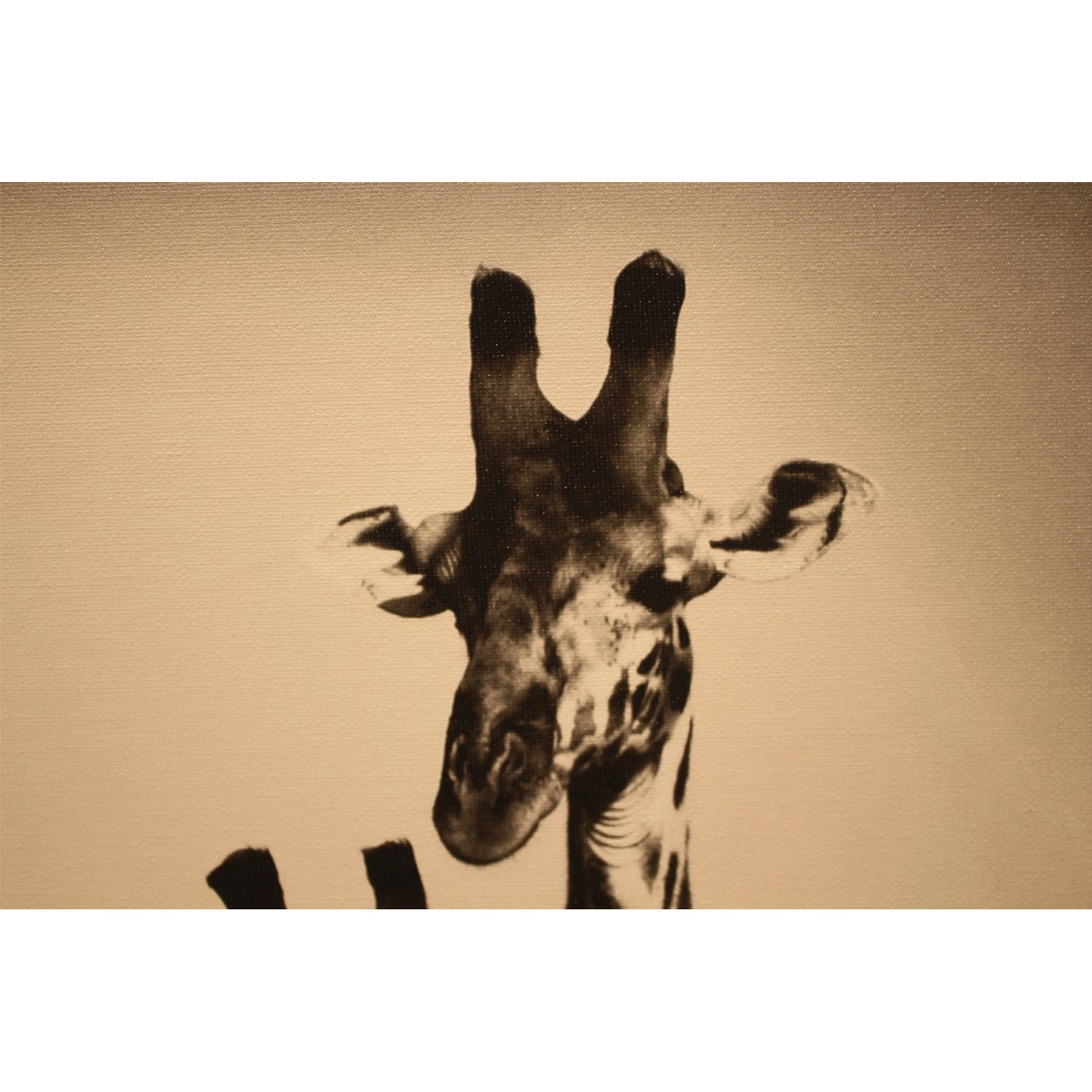 Mesmerizing african giraffe leftbank art ideas
