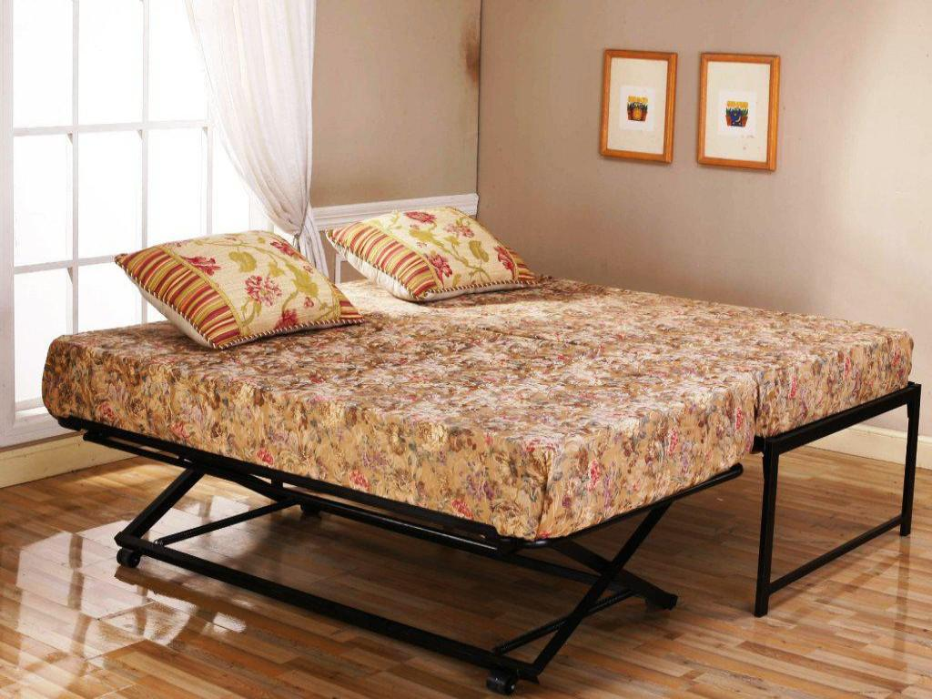 queen daybed with laminate flooring