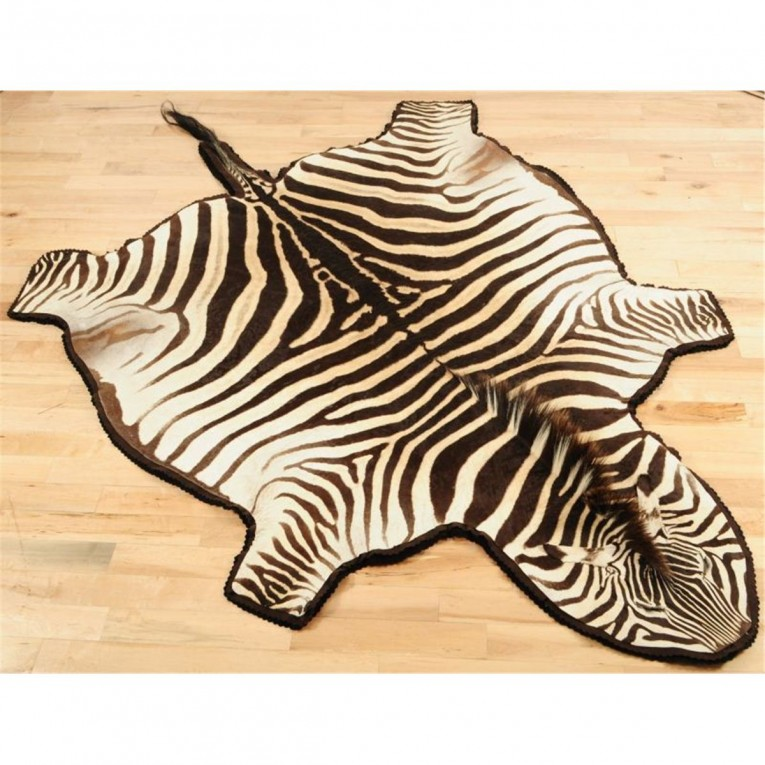 Amazing Zebra Skin Rug With Skin Rug Also Rug Animal Print Rug For Living Room Rug Ideas