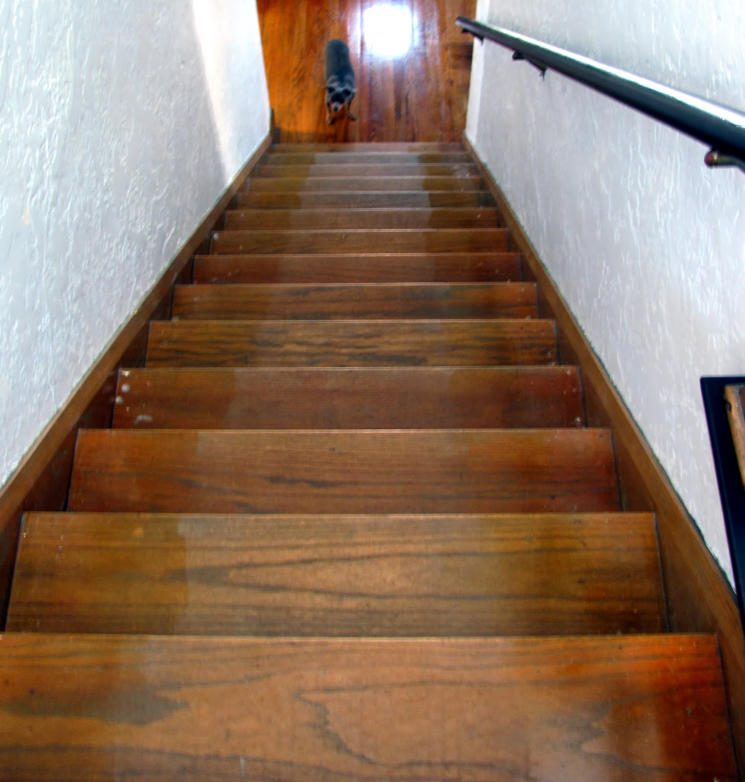 Brilliant dash and albert runner at home stairways combinet with laminate floor stairs