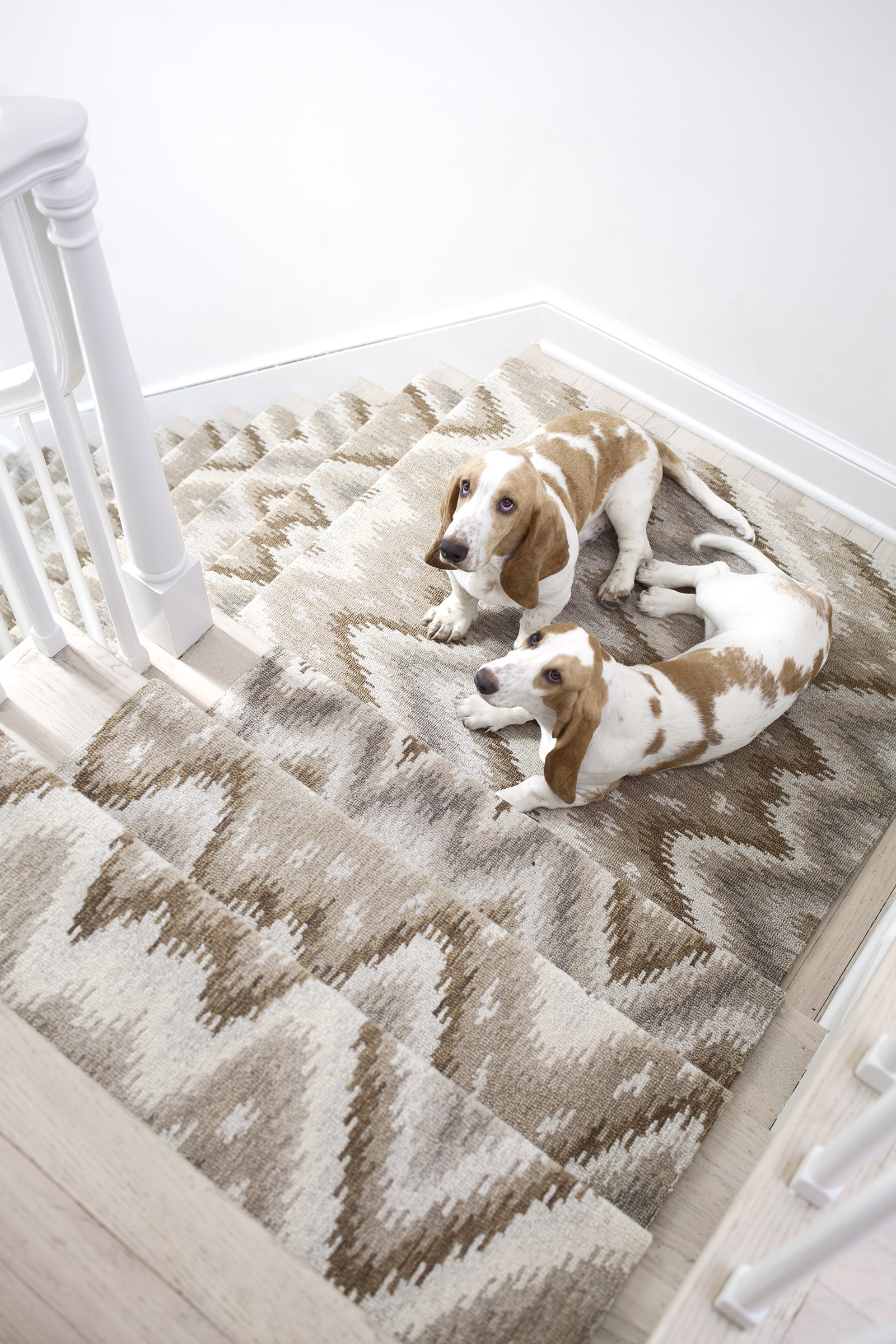 Classy dash and albert runner at home stairways combinet with laminate floor stairs