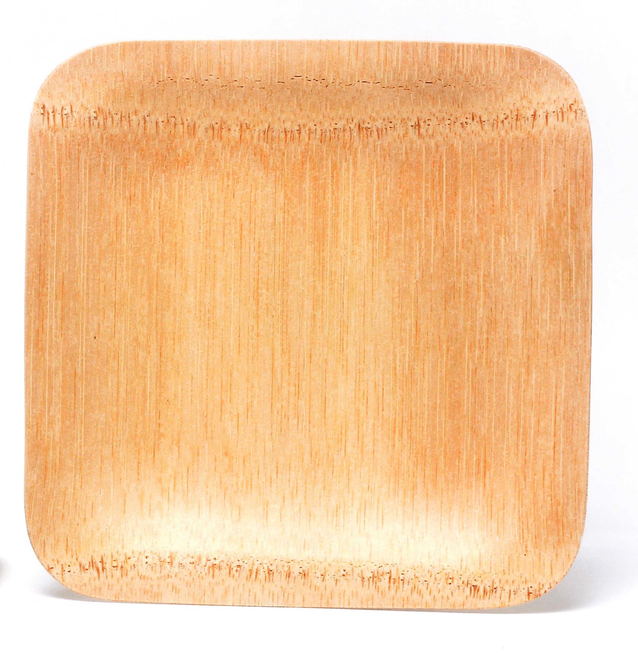 Dazzling bamboo plates with Core bamboo plates for serveware ideas
