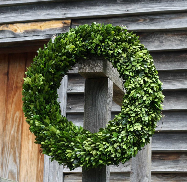 Amazing Round Preserved Artificial Boxwood Wreath