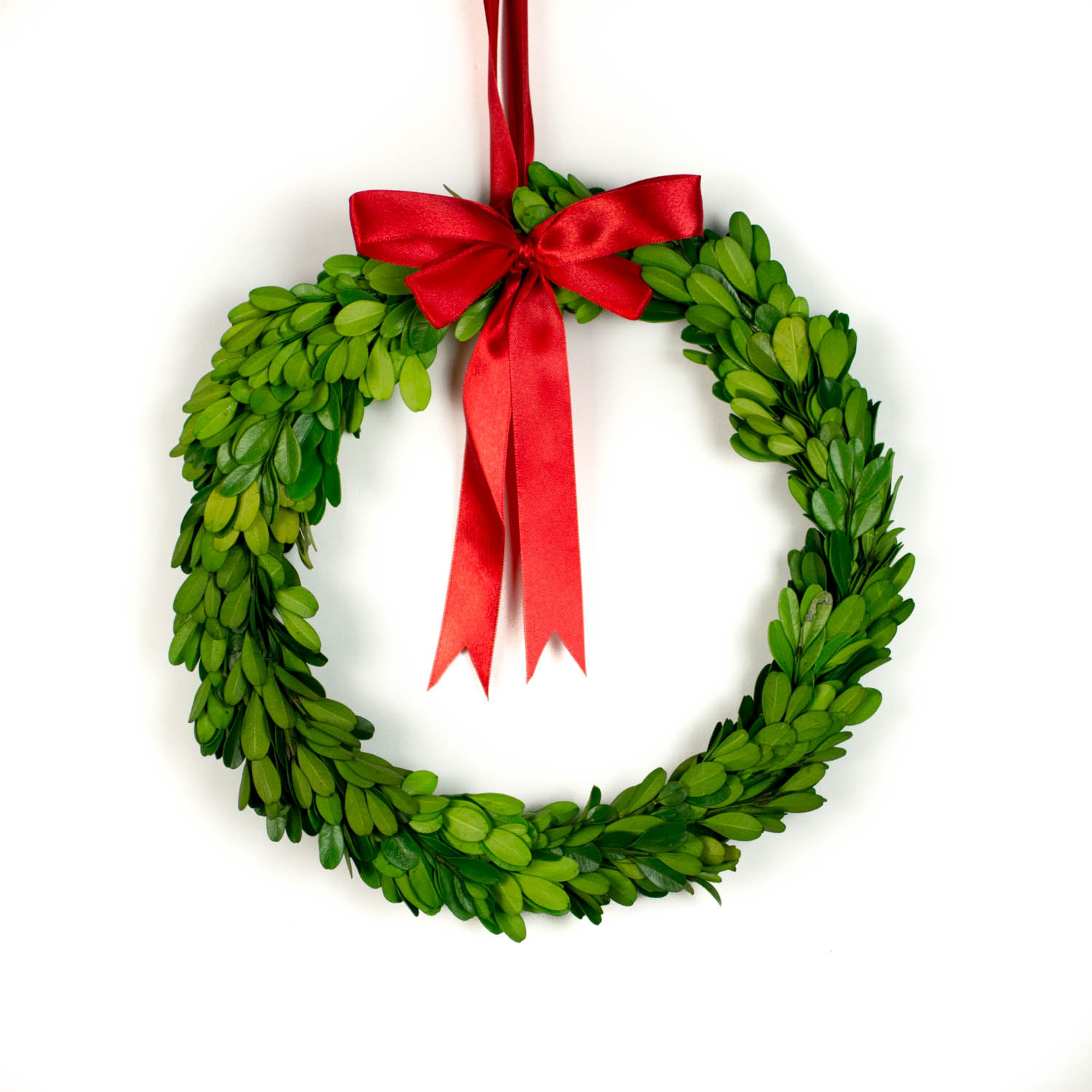 engaging artificial boxwood wreath with round preserved