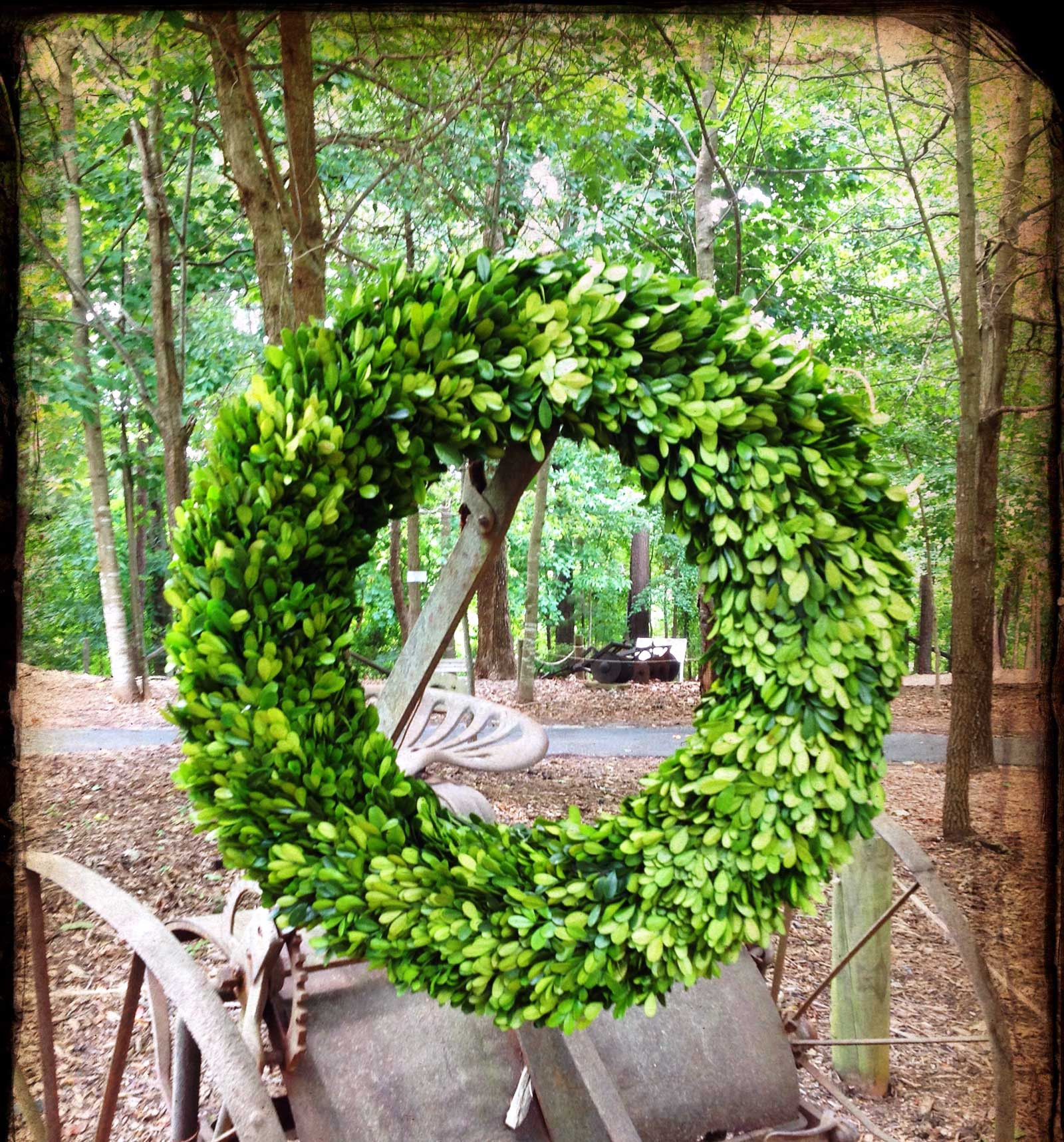 Interesting Artificial Boxwood Wreath with Simple Design for Exterior: Lovely Circle Artificial Boxwood Wreath