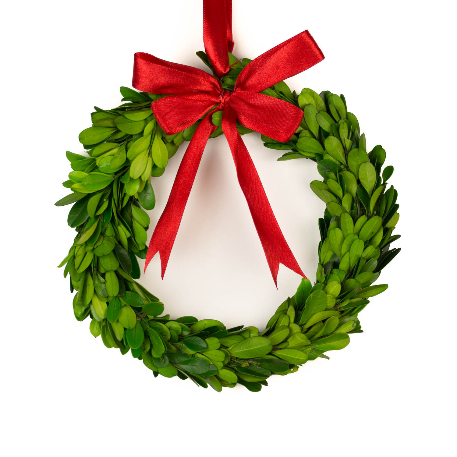 Interesting Artificial Boxwood Wreath with Simple Design for Exterior: Nice Preserved Artificial Boxwood Wreath