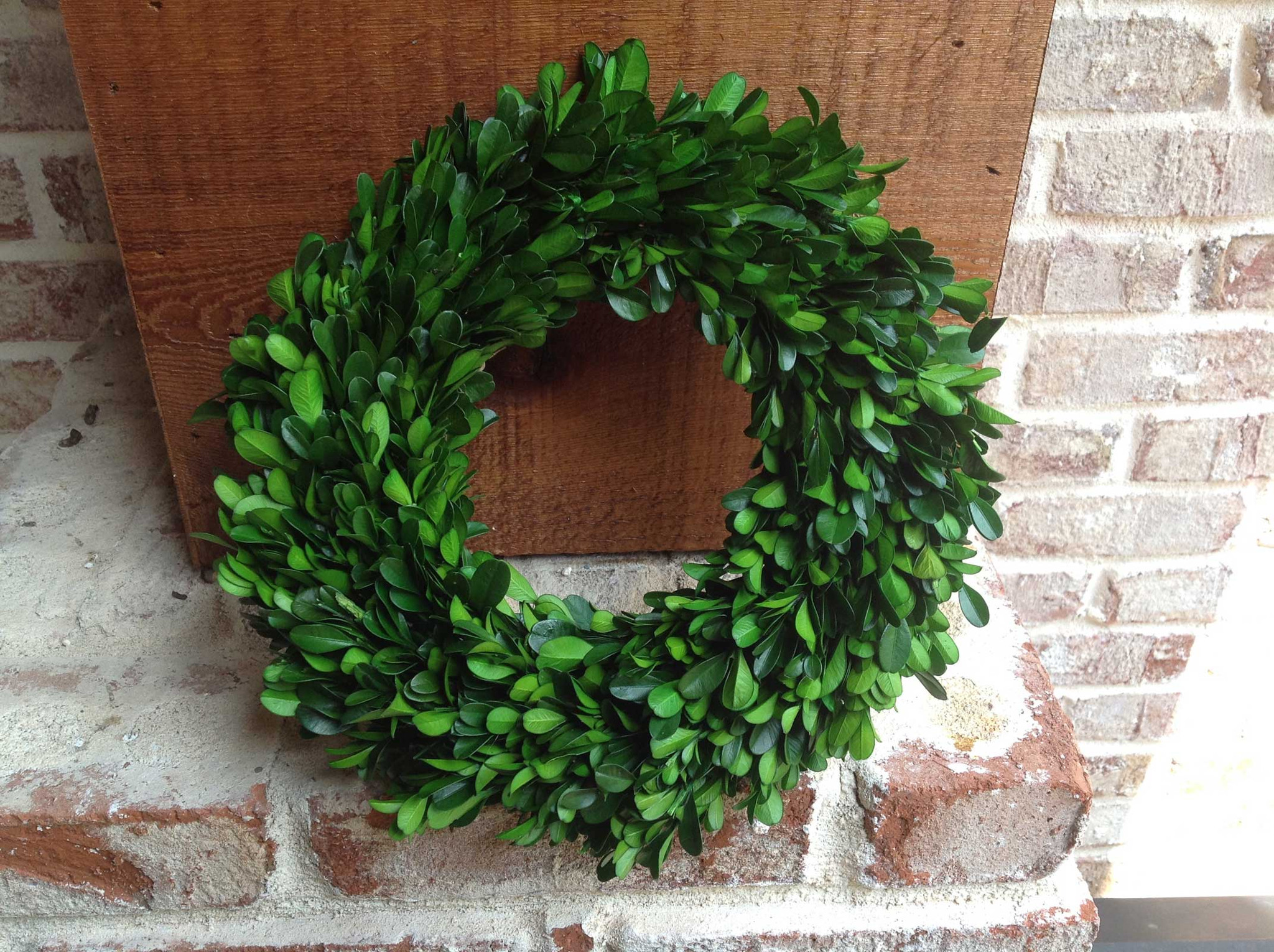 round classic artificial boxwood wreath